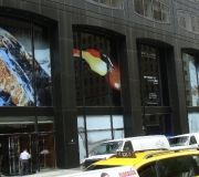 10corporate-window-graphics-installs-phillips