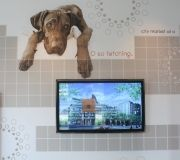 Custom wallpaper printing is a great way for branding environments with corporate images, logos, quotes, and more.